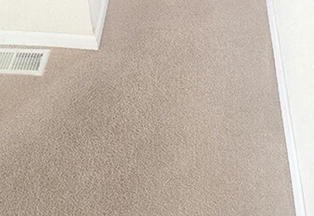Carpet Cleaning St. Helier